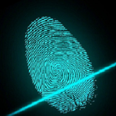 Fingerprint electronic